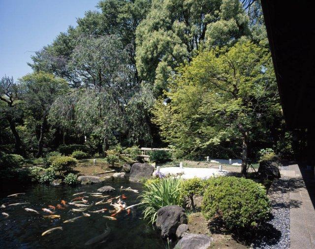 源氏館の庭園